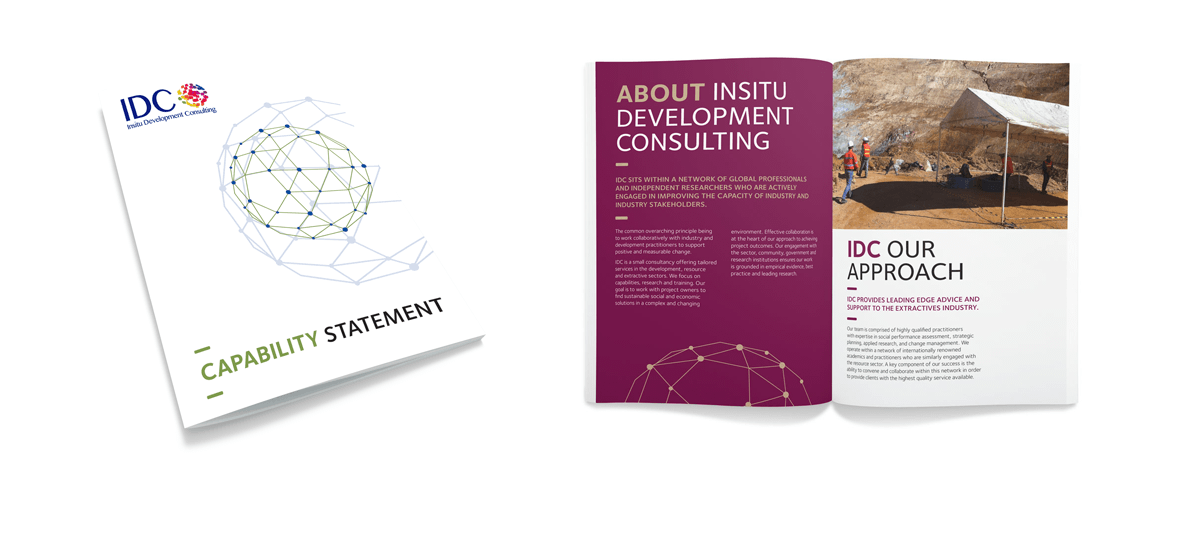 Insitu Development Consulting Brochure